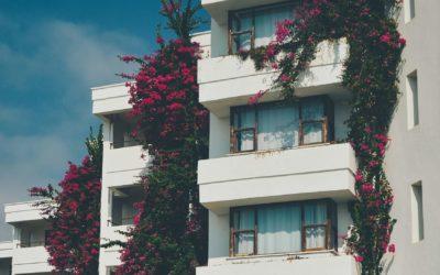 Wärmstens empfohlen: Der Contracting-Preis