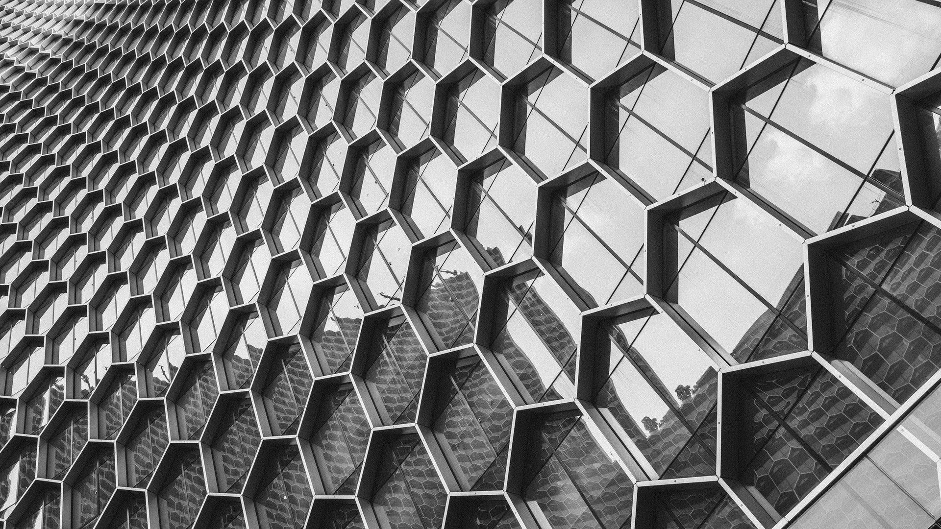 Vernetzung (Foto: Pexels / Soloman Soh